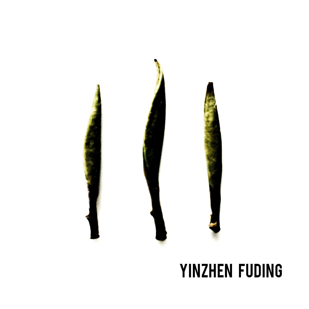 Ritratto di Yinzhen Fuding
