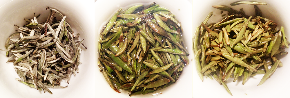 Bai Hao YinZhen