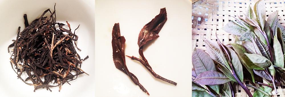 Tè nero birmano a variante viola (Zi Ya)